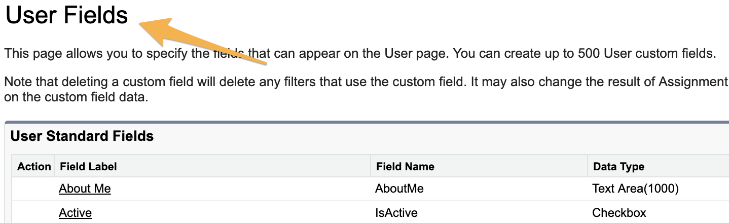 User_Fields___Salesforce_-_Developer_Edition.png